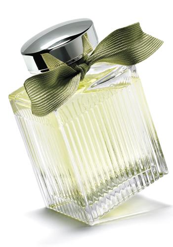 springs-top-fragrances
