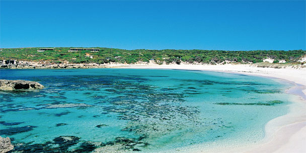 Black Book Travel Guide: Kangaroo Island and Adelaide, Australia