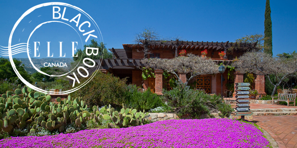 visiting-rancho-la-puerta-a-health-spa-and-fitness-retreat-guide-4
