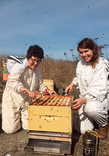 ELLE World: Queen bees Hives for Humanity