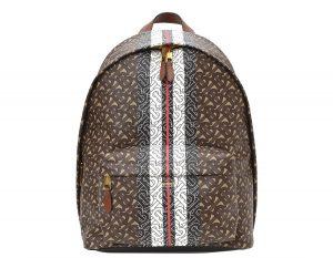 Burberry Monogram Stripe E-canvas Backpack